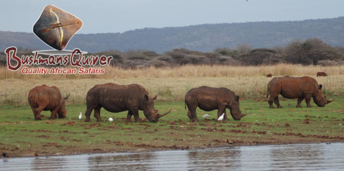 April 21: Bushmans Quiver South Africa Photo Safari – Discount Fishing Tackle – D&D Tire Service
