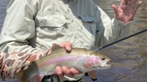 Fishing – Rainbow