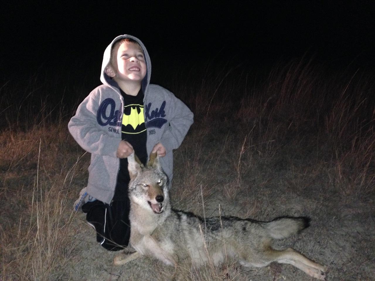 Texas-Coyote