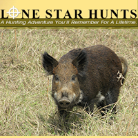 Lone Star Hunts