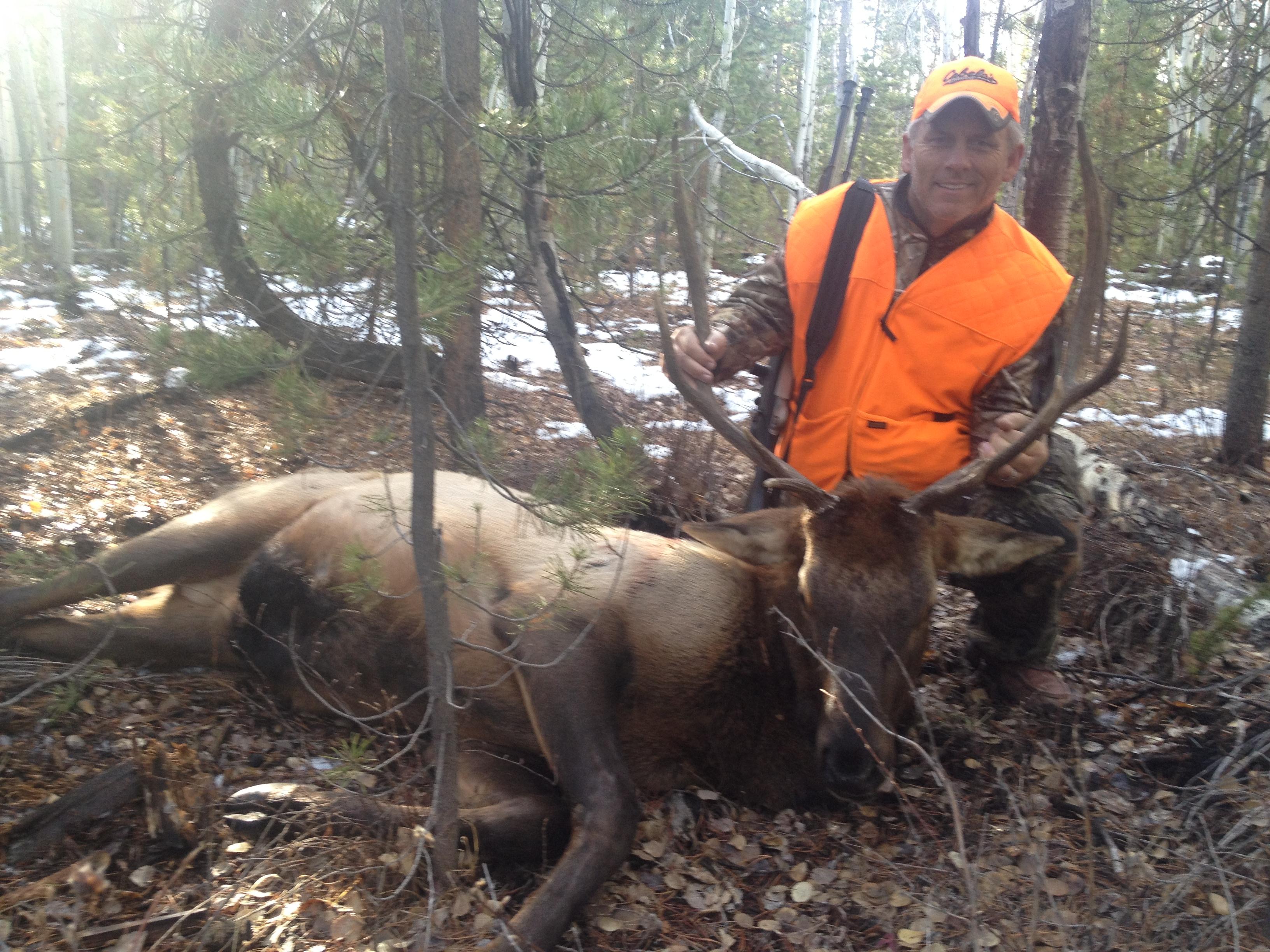 Waldon-Elk