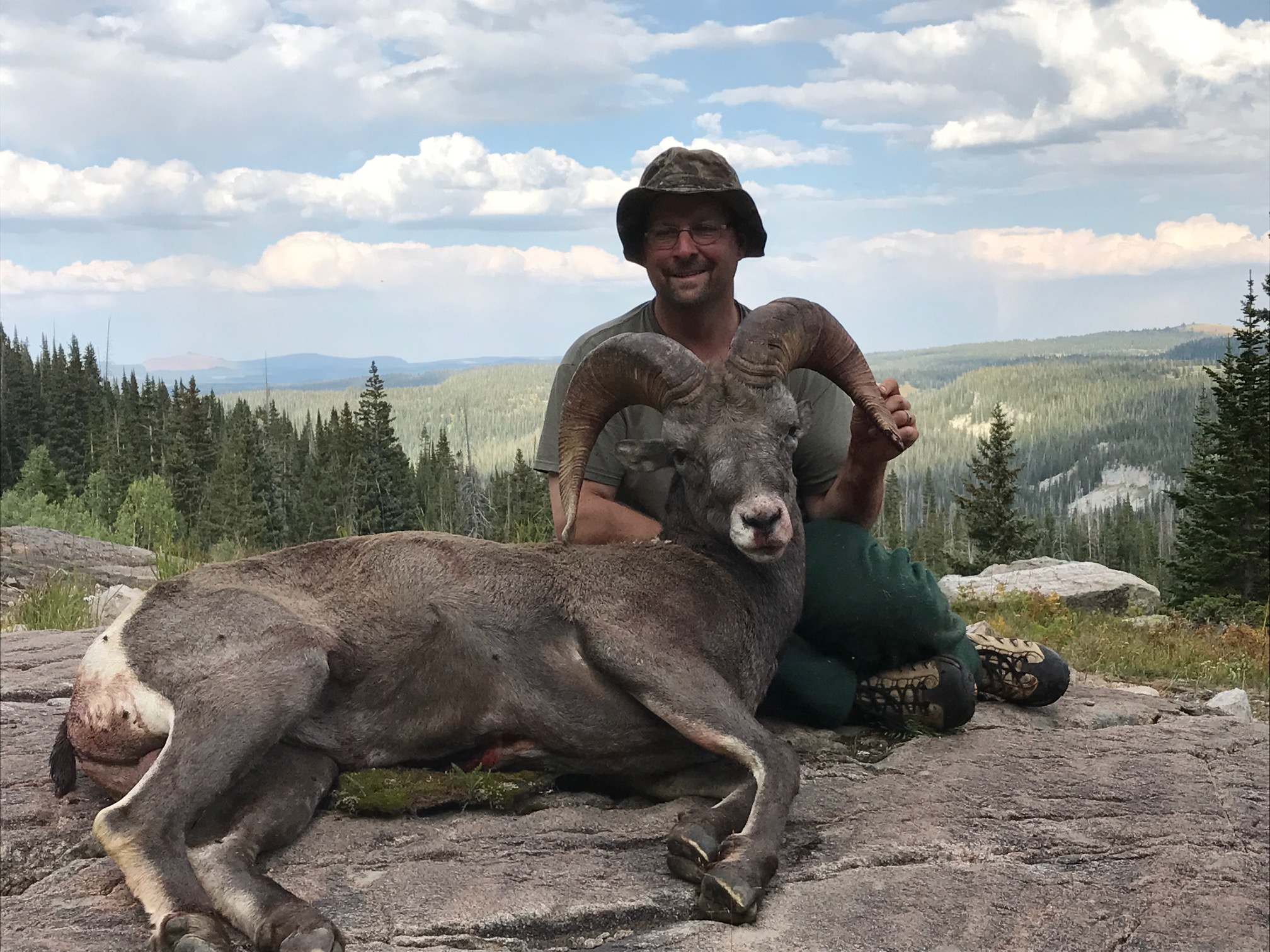 Colorado – Bighorn Sheep